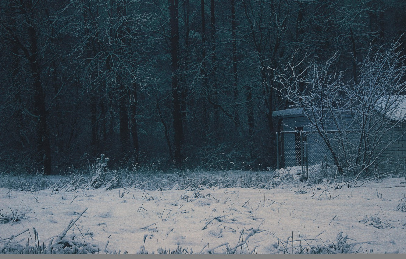Photo wallpaper winter, forest, nature, house, Wallpaper, the fence, dark, wallpaper, house, forest