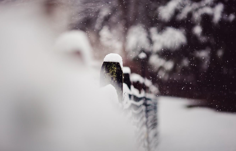Photo wallpaper winter, macro, snow, the fence
