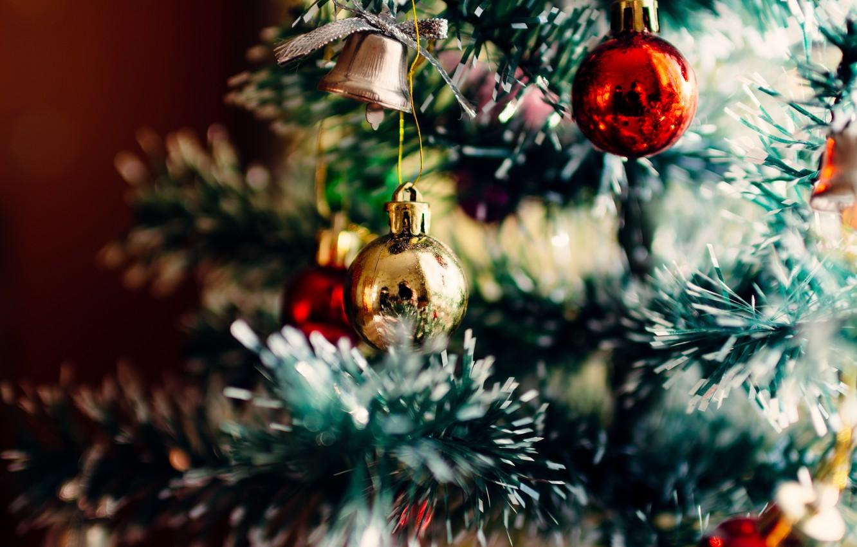 Photo wallpaper reflection, tree, ball, decoration