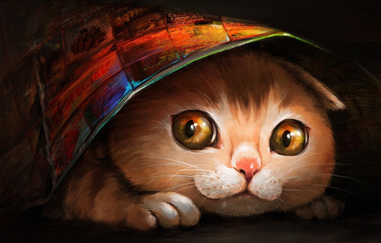 Photo wallpaper cat, face, blanket, art, hiding, ryuuka nagare