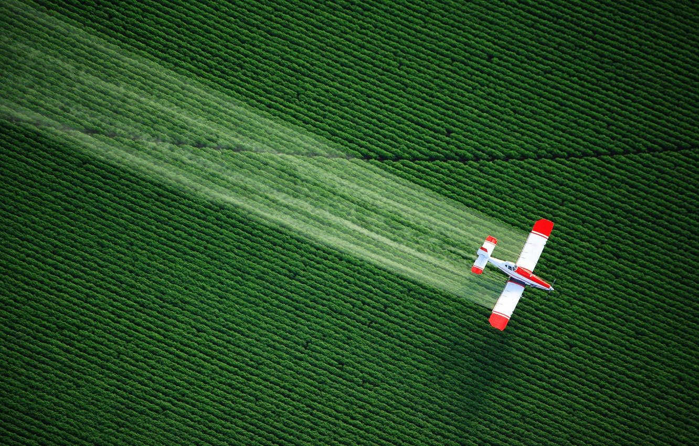 Photo wallpaper verde, avion, plantacion
