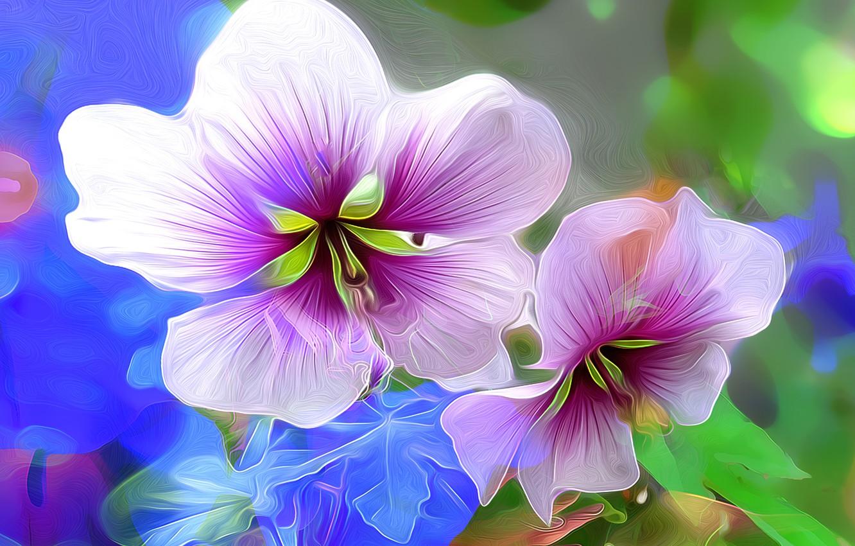 Photo wallpaper macro, flowers, nature, petals