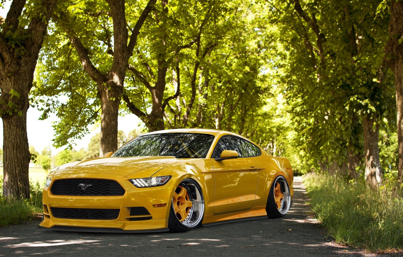 Photo wallpaper Mustang, Ford, Front, Yellow, Tuning, Stance, Wheels, 2015