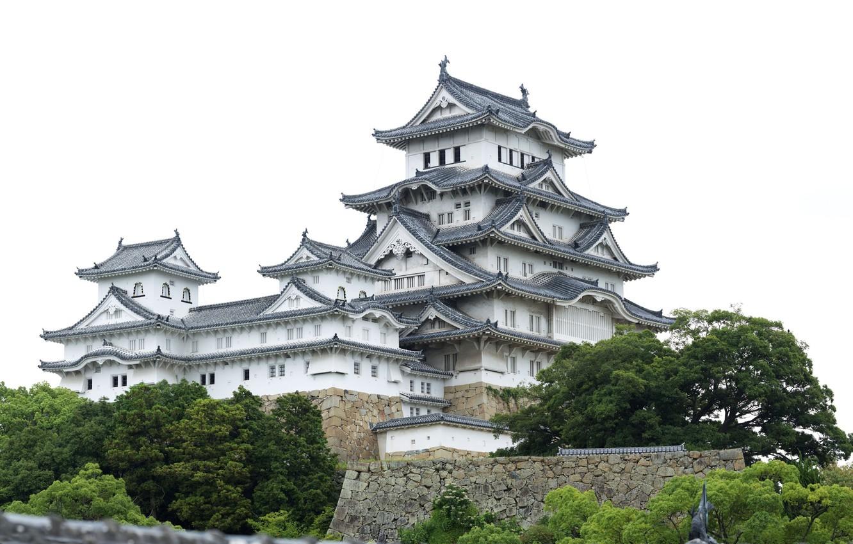 Photo wallpaper trees, Japan, temple, japan