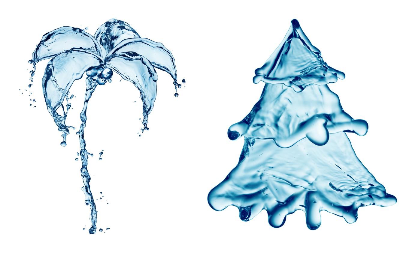 Photo wallpaper water, drops, squirt, Palma, creative, figure, tree, spruce, splash, art, tree, water, art, splash, drops, ...