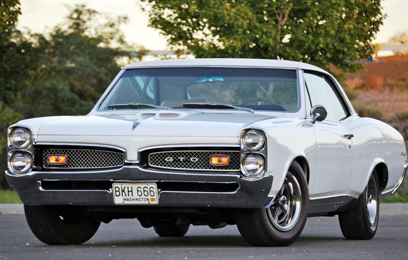 Photo wallpaper white, tree, muscle car, classic, Coupe, Pontiac, GTO, 1967, the front, Pontiac, Muscle car, Tempest, …