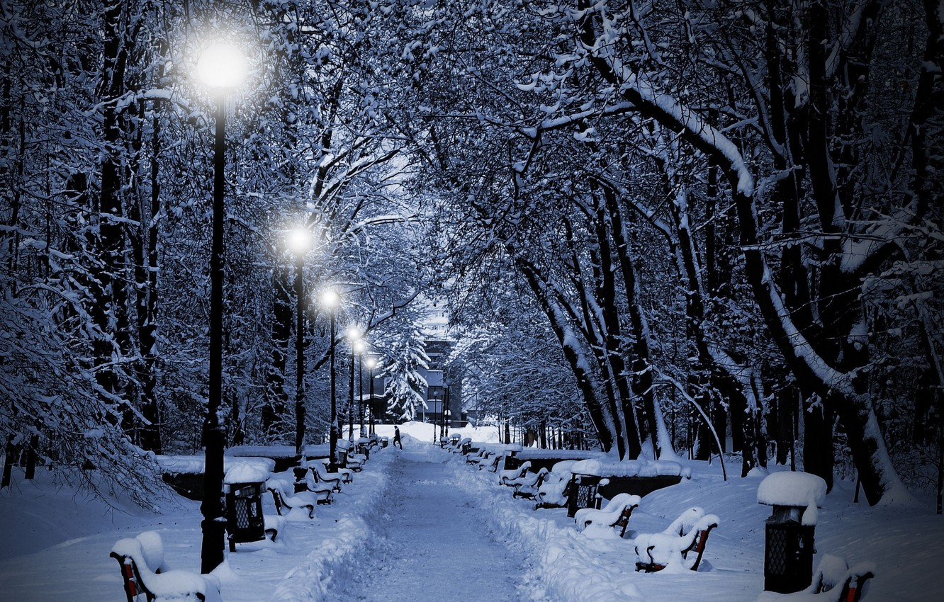 Photo wallpaper winter, snow, trees, lights, Park, the evening, lights, benches