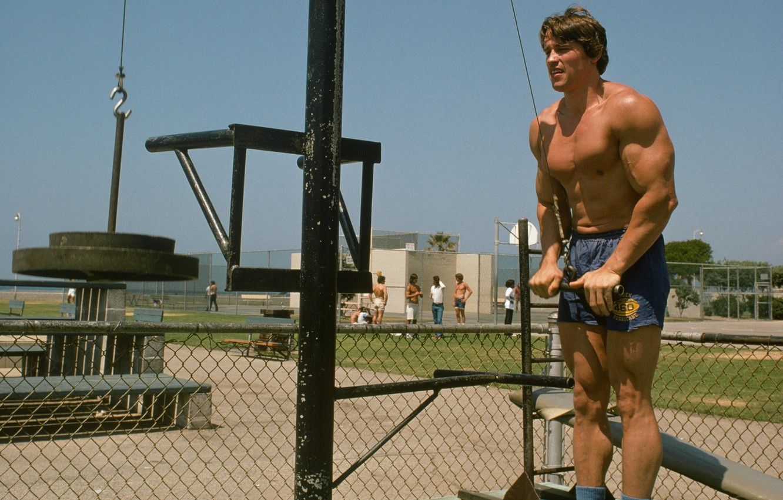 Photo wallpaper athlete, Actor, bodybuilder, Arnold Schwarzenegger, Producer, Director, Arnold Schwarzenegger