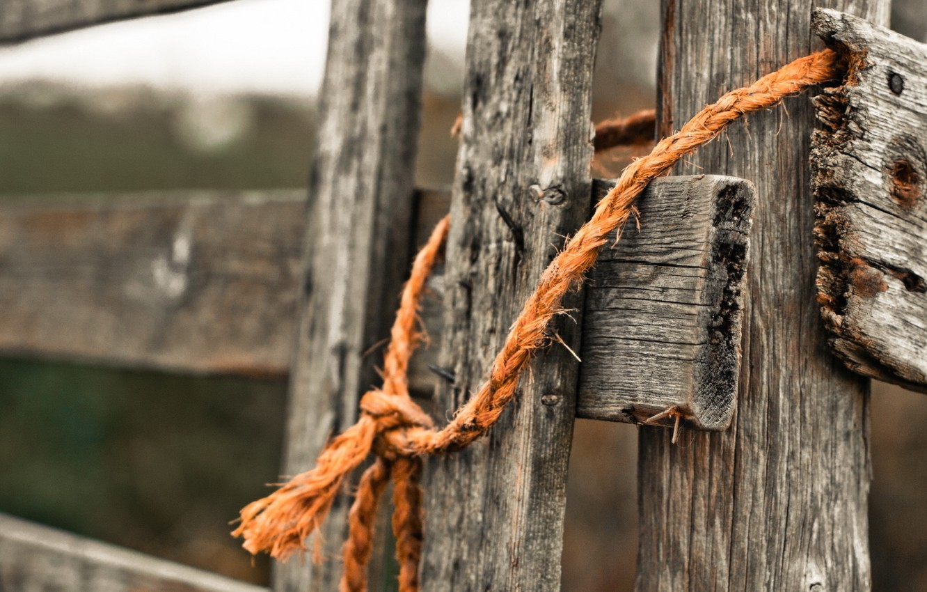 Photo wallpaper wood, rope, gate