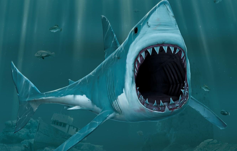 Photo wallpaper figure, mouth, Shark