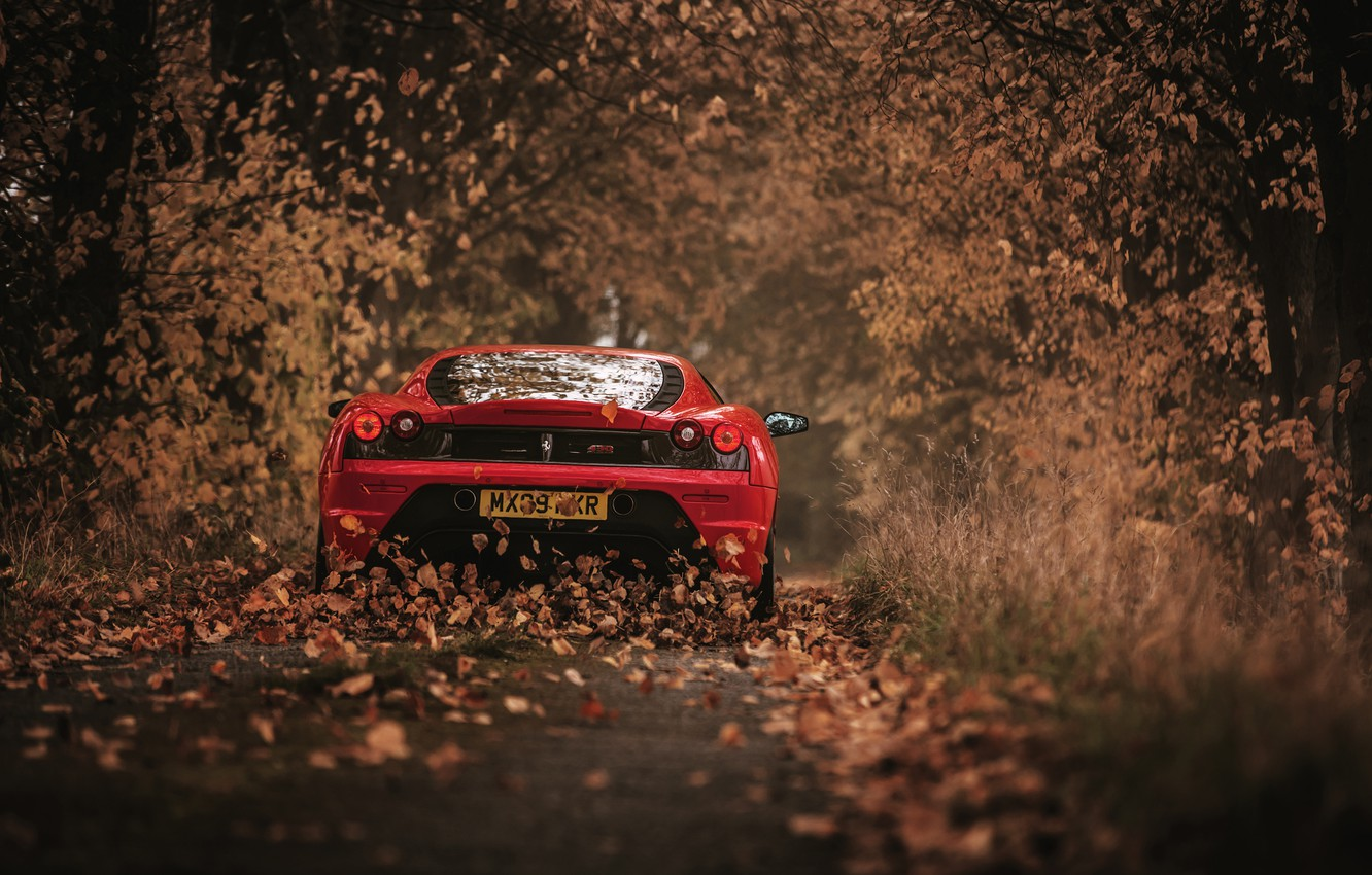 Photo wallpaper autumn, leaves, 430 Scuderia