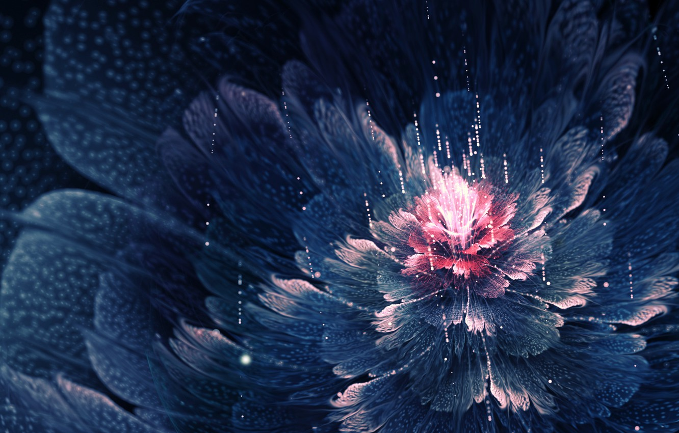 Photo wallpaper flower, drops, petals