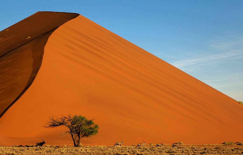 Photo wallpaper sand, the sky, landscape, mountain