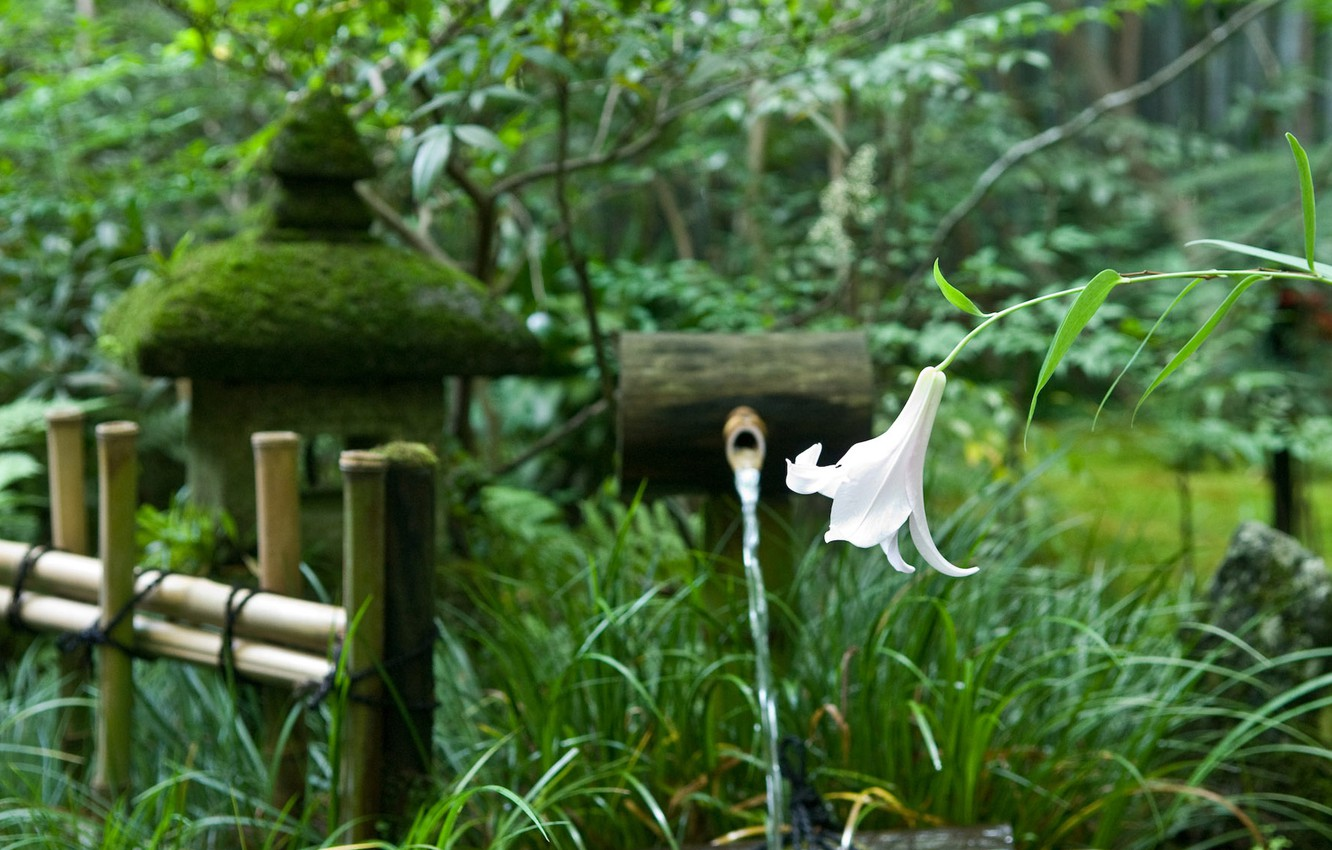 Photo wallpaper flower, trees, the fence, Lily, Japan, garden, spring
