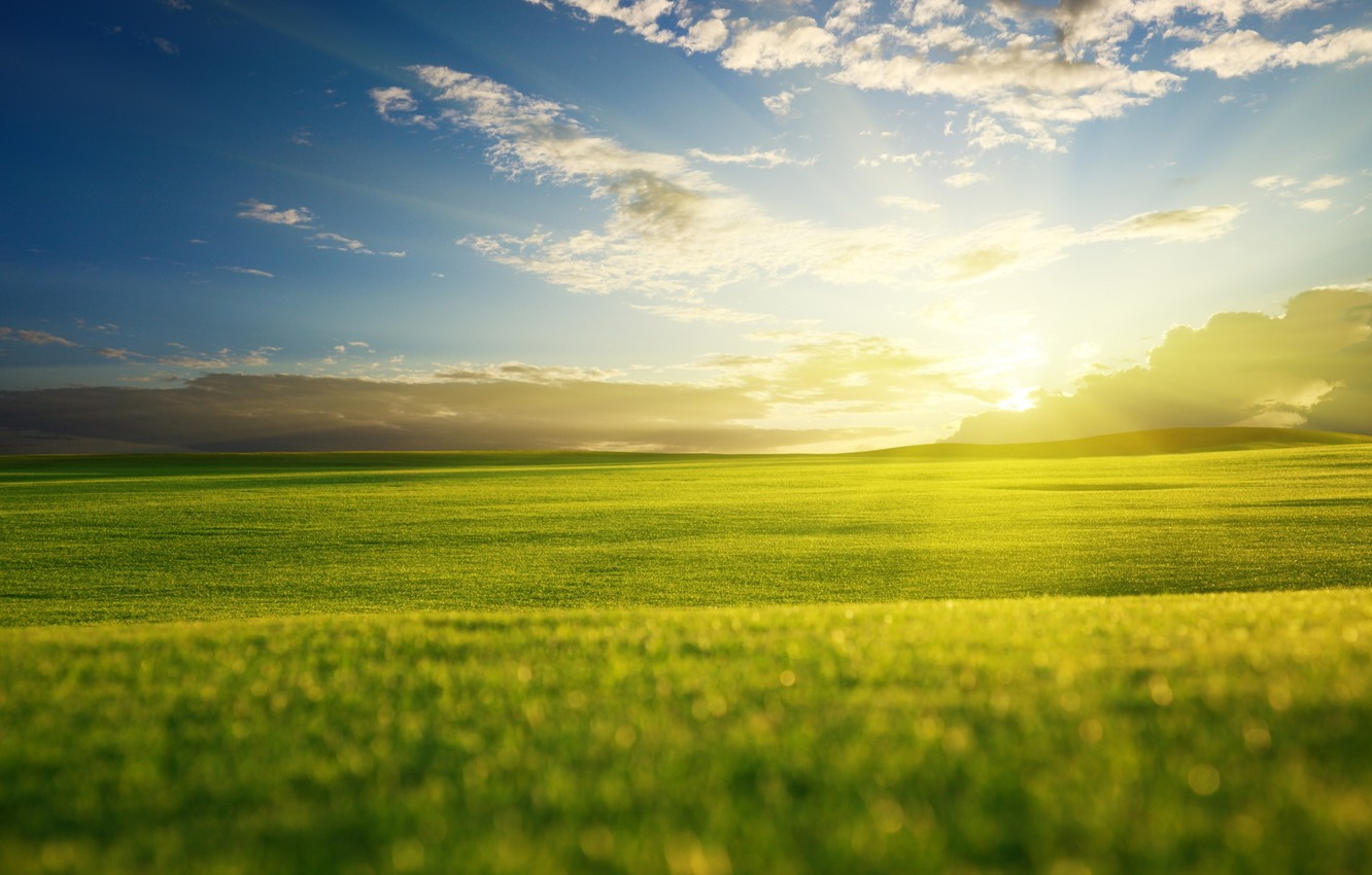 Photo wallpaper greens, field, the sky, grass, the sun, clouds, rays, light, nature, green, hills, landscapes, view, …