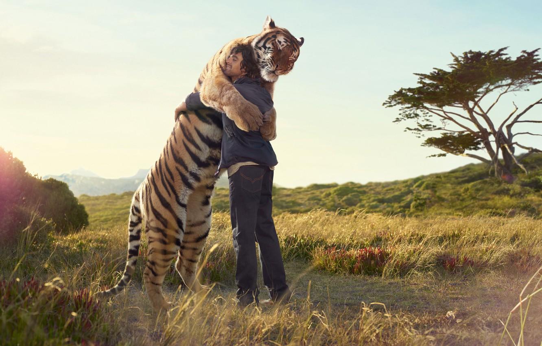 Photo wallpaper field, tree, people, meeting, Tiger, print, hug