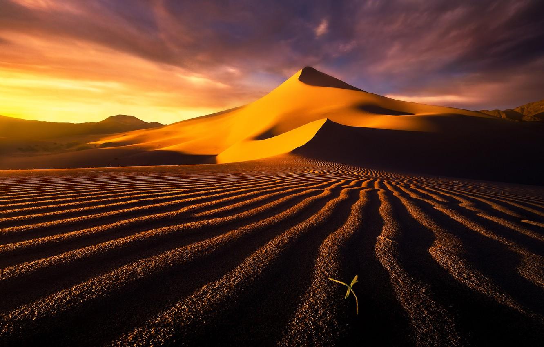 Photo wallpaper sand, the sky, clouds, the dunes, desert, dunes
