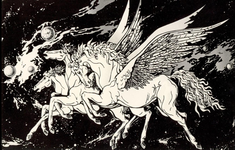 Photo wallpaper Black and White, Pegasus, Space Fantasy, Photos