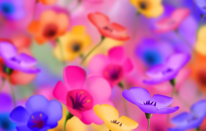 Photo wallpaper field, summer, flowers, mood