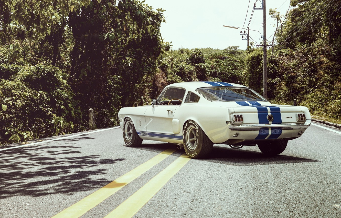 Photo wallpaper Ford, Shelby, Auto, Road, Ford, Muscle, Car, Shelby, Kar, Oil, GT350R
