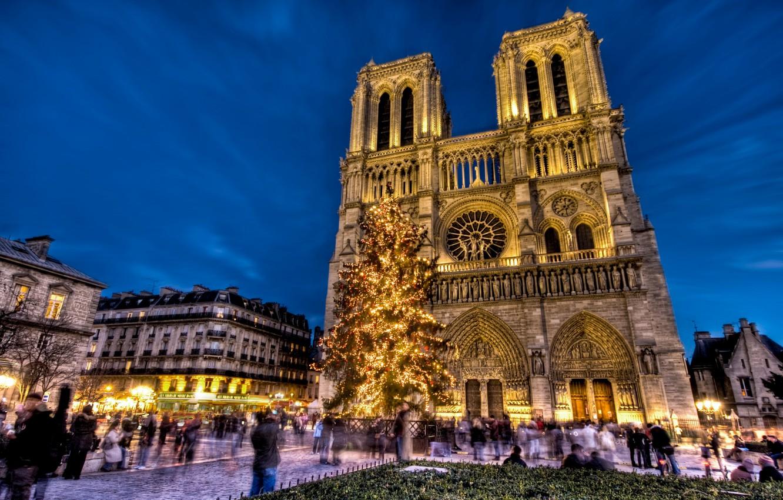 Photo wallpaper holiday, France, Paris, tree, New Year, area, Notre Dame Cathedral, Notre Dame de Paris, Notre …