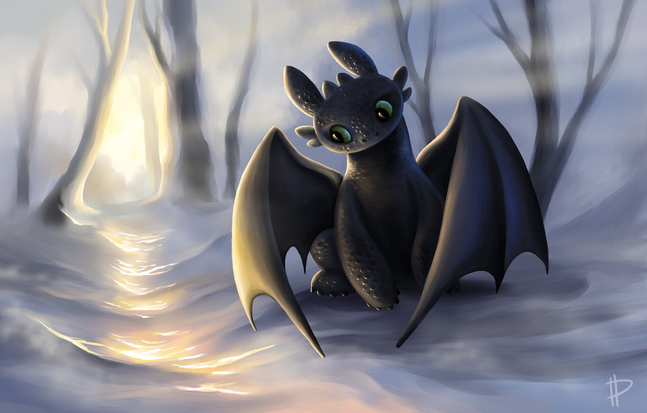 Photo wallpaper look, the sun, snow, dragon, the game, art, how to train your dragon, the night …