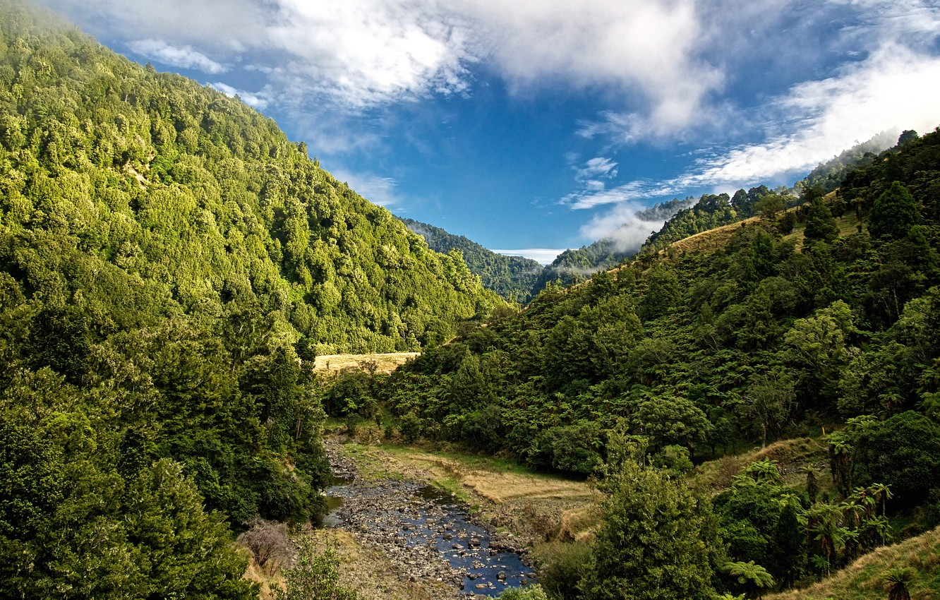 Photo wallpaper forest, the sky, clouds, trees, mountains, stream, stones, New Zealand