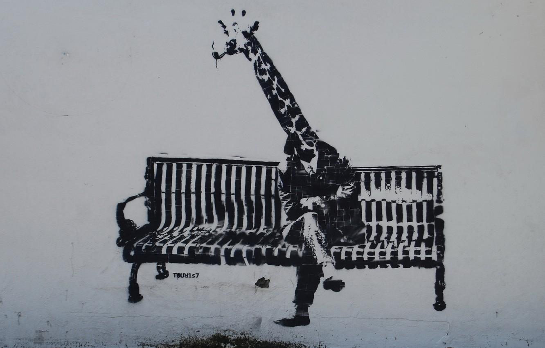 Photo wallpaper bench, wall, graffiti, people, giraffe