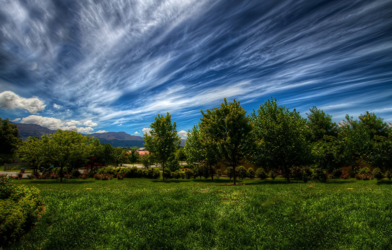 Photo wallpaper greens, the sky, grass, clouds, trees, landscape, nature, green, plants, grass, sky, landscape, nature, clouds, …