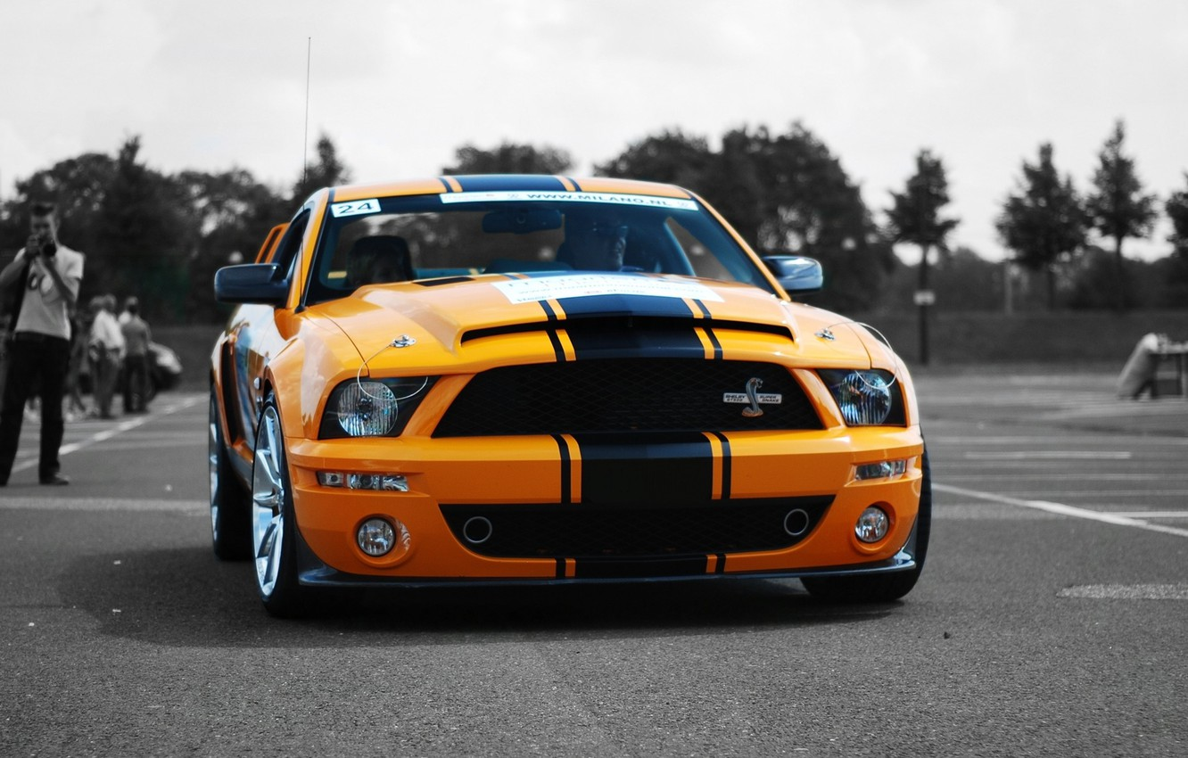 Photo wallpaper shelby, cars, auto, gt500