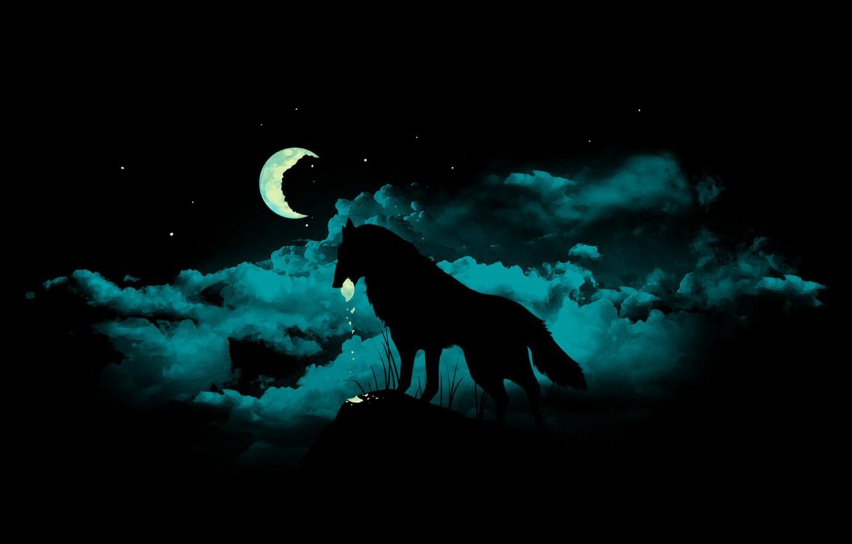Photo wallpaper fragments, darkness, the moon, wolf, werewolf, werevolf, mater, dark night