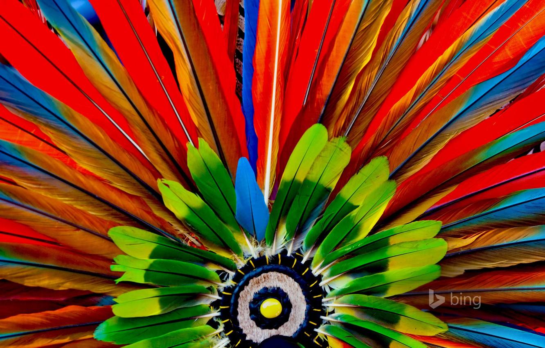 Photo wallpaper macro, paint, feathers, the Aztecs, headdress