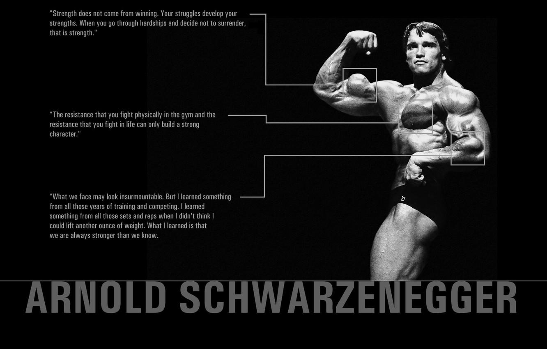 Photo wallpaper power, body, muscle, quotes, Arnold, Schwarzenegger