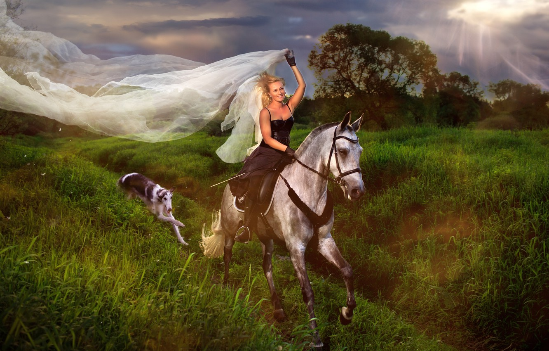 Photo wallpaper girl, horse, dog, rider, veil, Greyhound