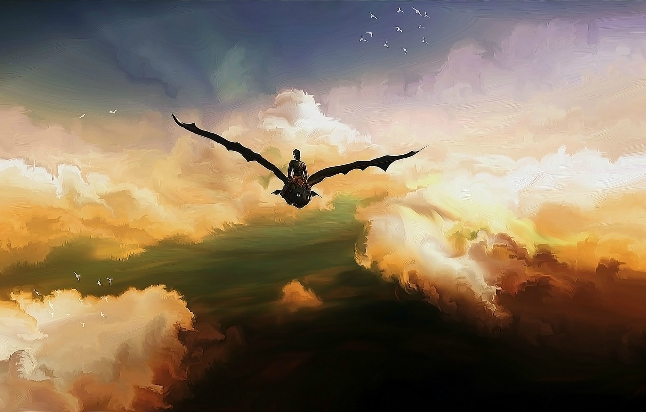 Wallpaper The Sky Birds Hiccup Toothless Toothless The Night