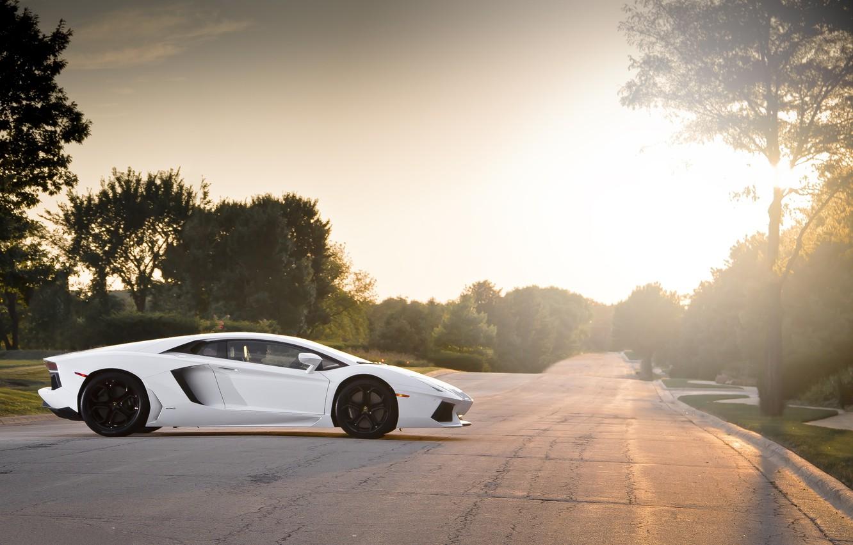 Photo wallpaper road, white, trees, sunset, profile, white, wheels, lamborghini, black, Blik, aventador, lp700-4, Lamborghini, aventador, black …