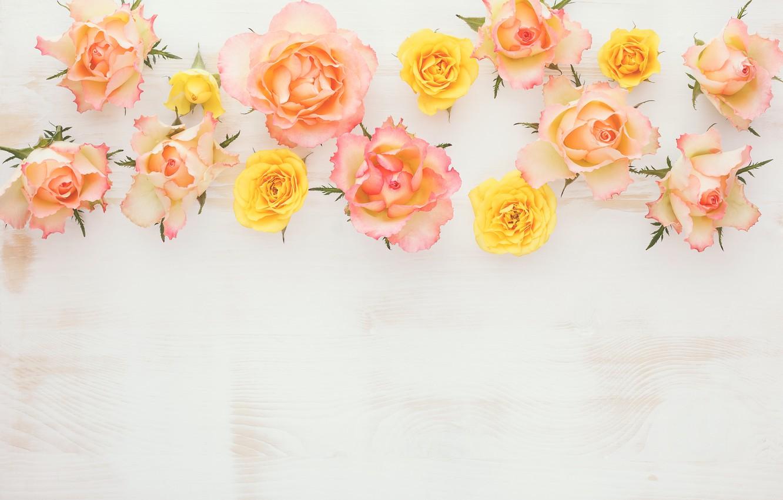 Photo wallpaper wood, flowers, roses