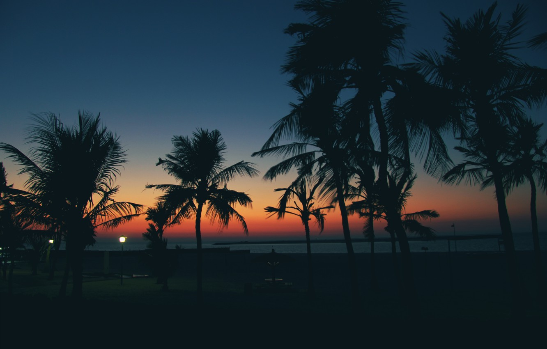 Photo wallpaper beach, sunset, palm trees