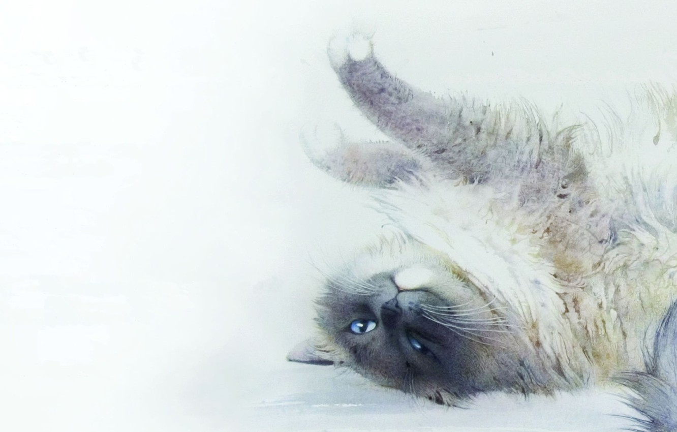 Photo wallpaper cat, cat, picture, art, watercolor, lies, stretching