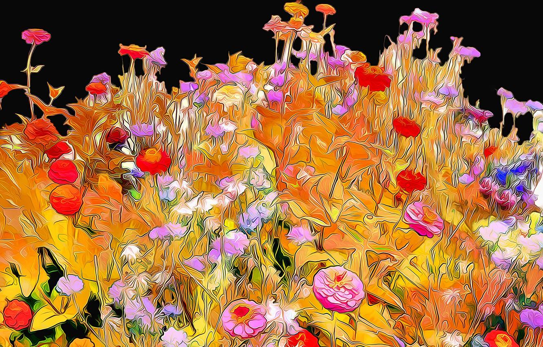 Photo wallpaper line, flowers, rendering, background, paint, petals, garden, flowerbed