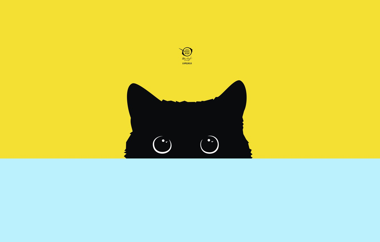 Photo wallpaper vector, digital, art, kitty, cats, pictures, drawings, images, radic, zelko, bfvrp, artworks
