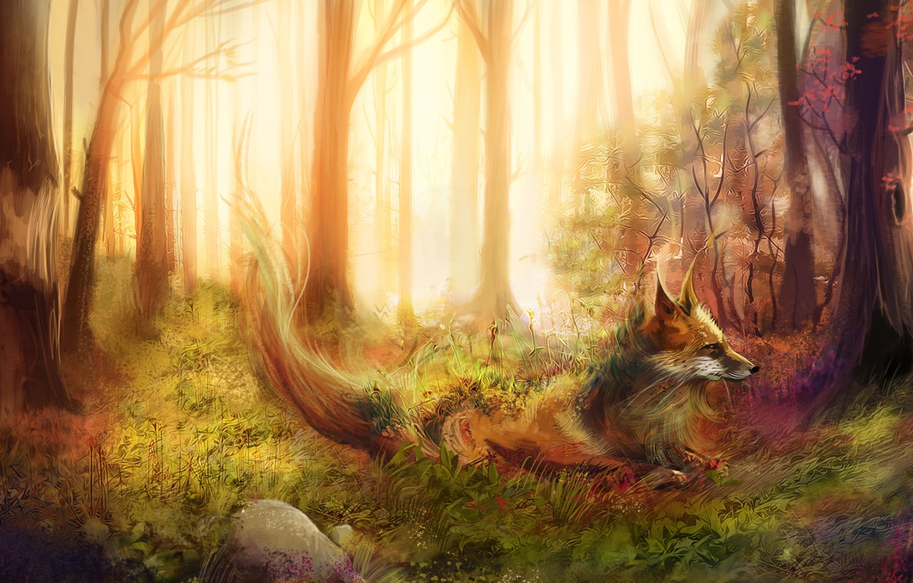 Photo wallpaper forest, grass, trees, stones, Fox, red