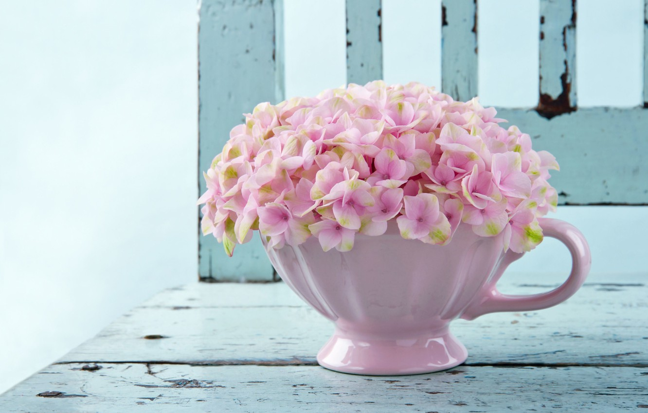 Photo wallpaper flowers, background, pink, widescreen, Wallpaper, wallpaper, flowers, widescreen, flowers, background, full screen, HD wallpapers, vase, …