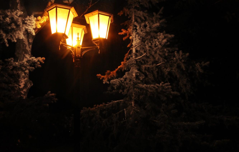 Photo wallpaper holiday, lamp, tree, spruce, lantern, pine, 2016