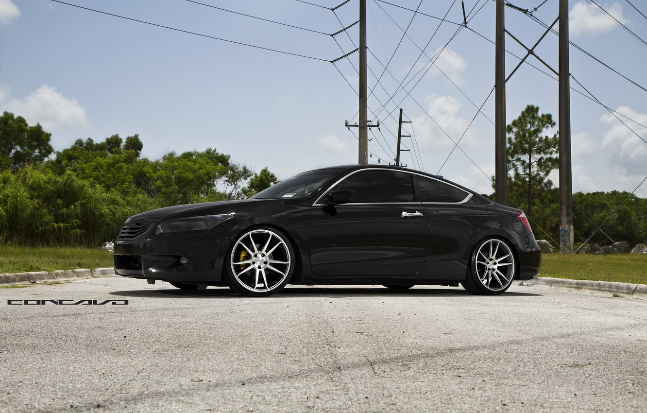 Photo wallpaper trees, Honda, Accord, Coupe, Wheels, Concave, CW-S5
