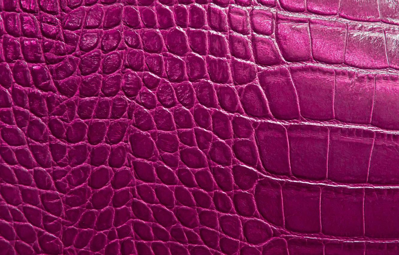 Photo wallpaper reptile, scales, texture alligator skin
