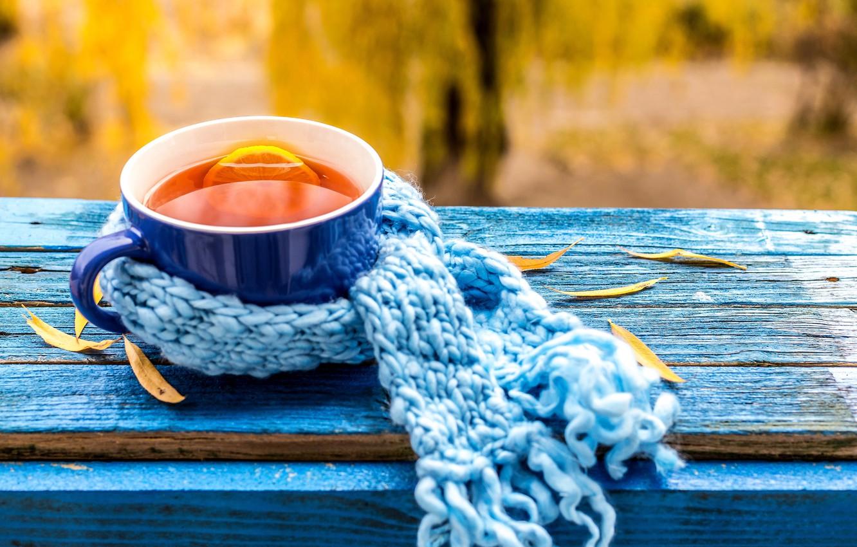 Photo wallpaper autumn, Cup, autumn, leaves, cup, tea, scarf, fall, autumn leaves, maple