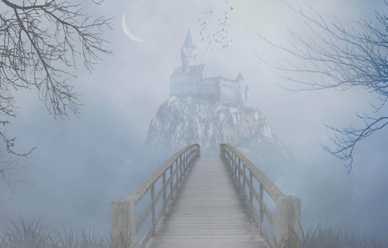 Photo wallpaper grass, trees, birds, bridge, fog, rock, castle, the darkness, Crescent