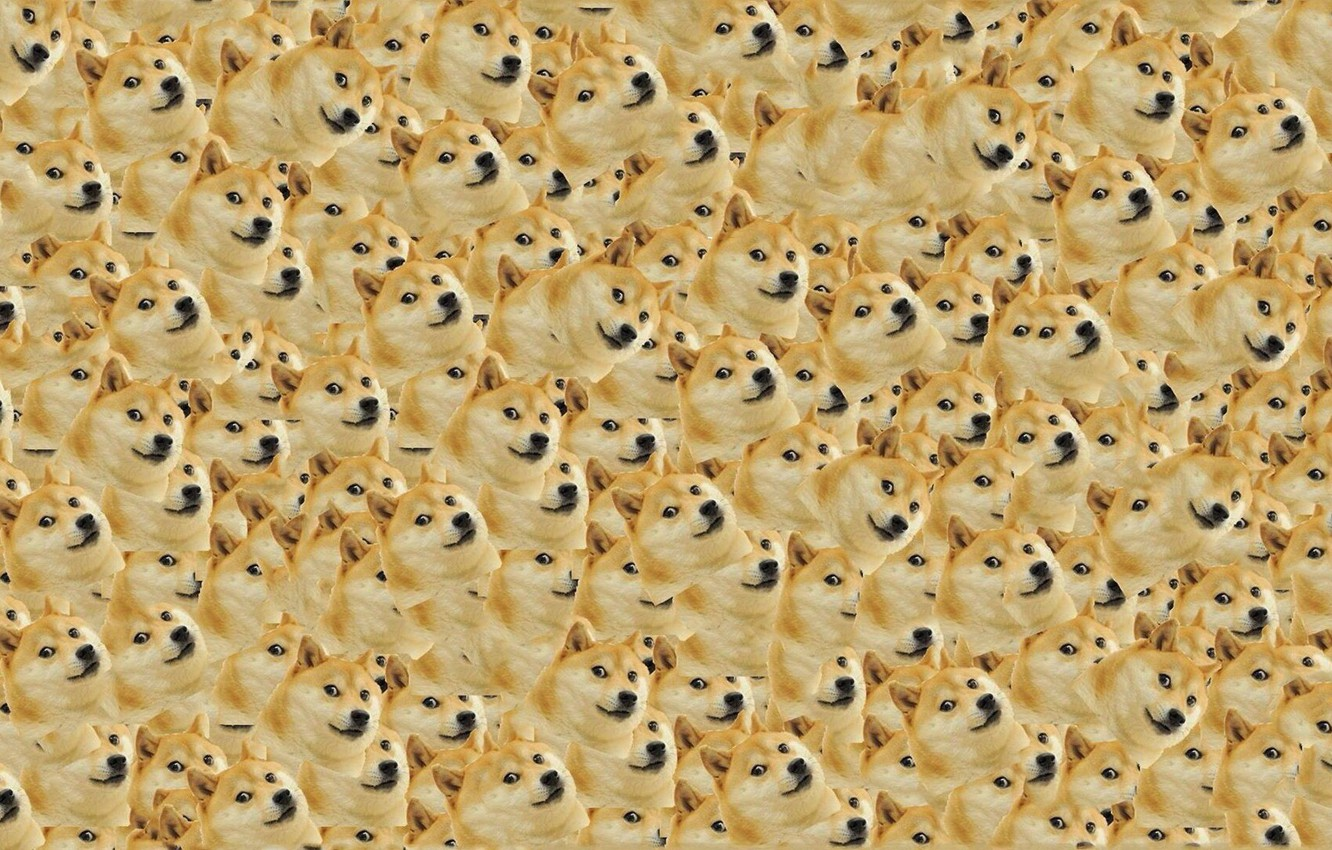 Photo wallpaper Dog, Dog, Texture, Texture, Doge