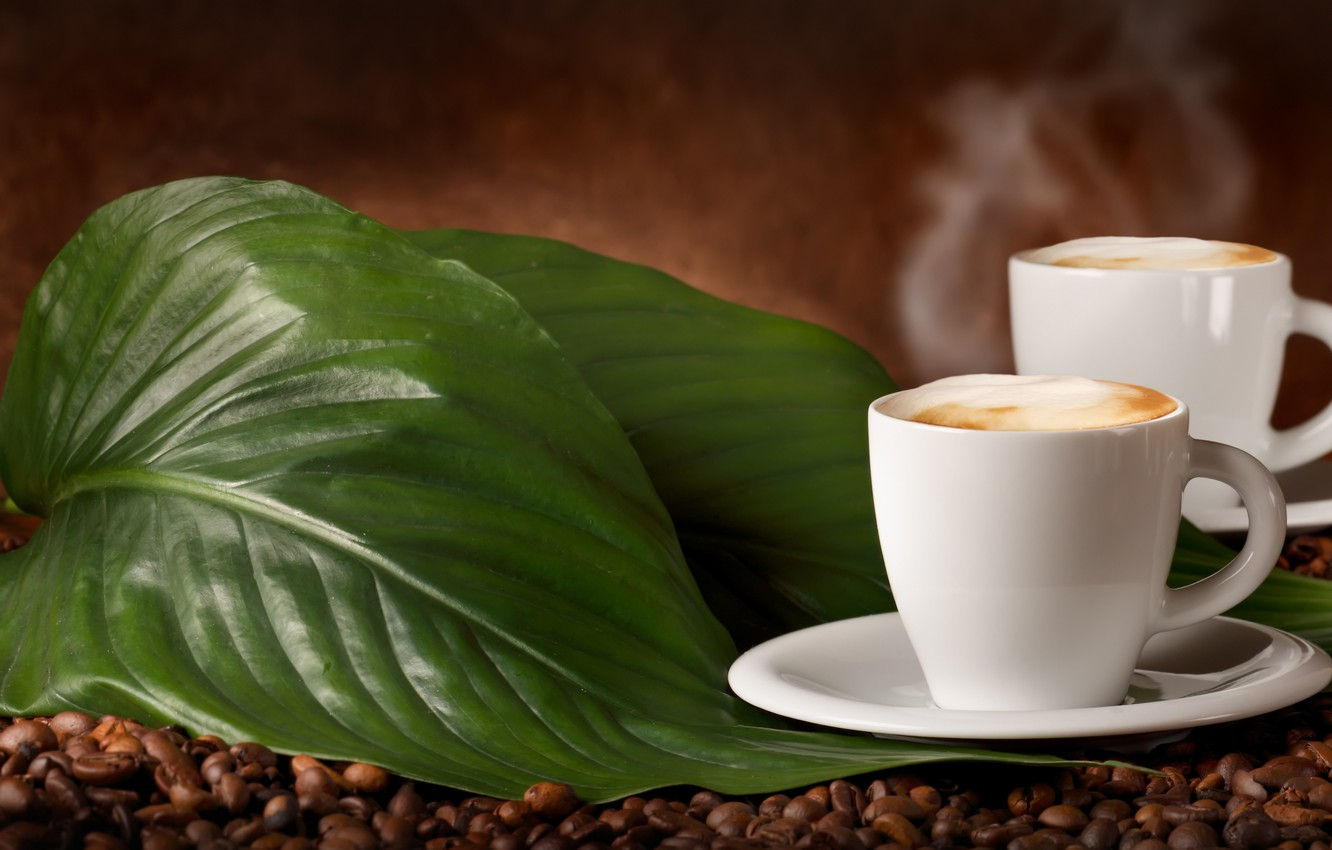 Photo wallpaper leaves, coffee beans, flavored coffee